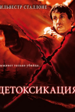 Детоксикация (2001)