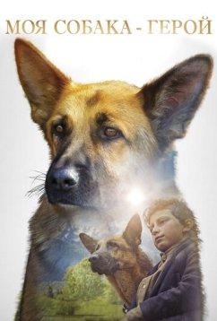 Моя собака — герой (2019)